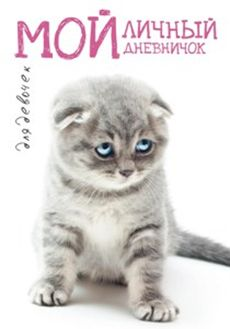 Котик грустный Дневничок Мой личный дневничок
