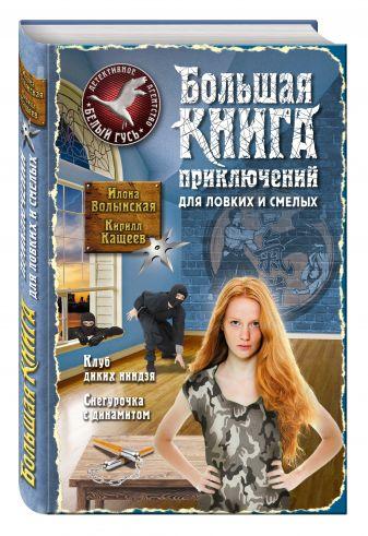 Илона Волынская, Кирилл Кащеев - Большая книга приключений для ловких и смелых обложка книги