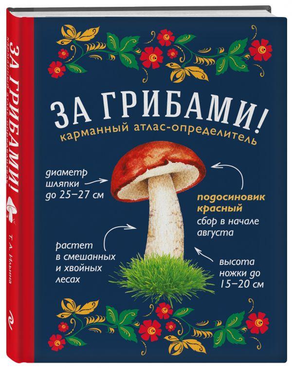 Ильина Татьяна Александровна: За грибами. Карманный атлас-определитель