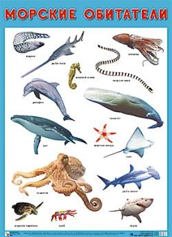 ПЛ Морские обитатели