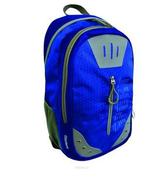 Рюкзак спортивный молодежный, цвет- синий. Размер 49*32*19 см, 2 отделения, уплотненная спинка, в наружном кармане органайзер для телефона и мелочей,