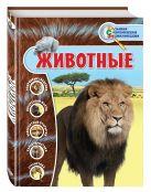 Д.А. Лукашанец, О.Ч. Мазур, С.С. Ивинская - Животные' обложка книги