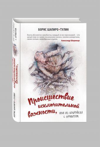 Происшествие исключительной важности, или из Бобруйска с приветом Шапиро-Тулин Б.