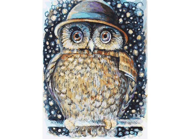 Живопись на картоне 30*40 Сова в шляпе (3073-CS) набор белоснежка сова в шляпе 3073 cs