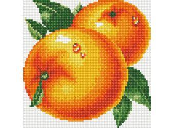 Мозаика на подрамнике Сочные апельсины (031-ST-S)
