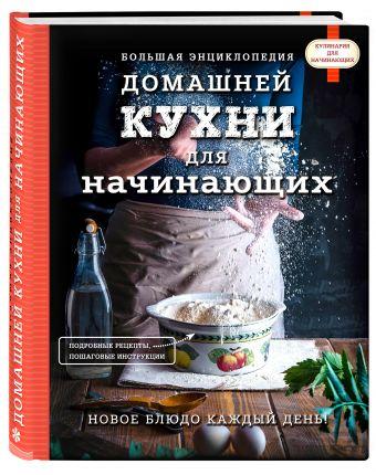 Большая энциклопедия домашней кухни для начинающих