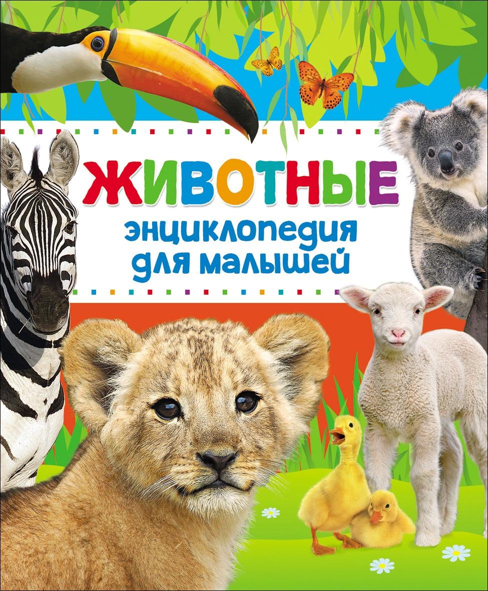 Энциклопедия животных для малышей (нов.) цена
