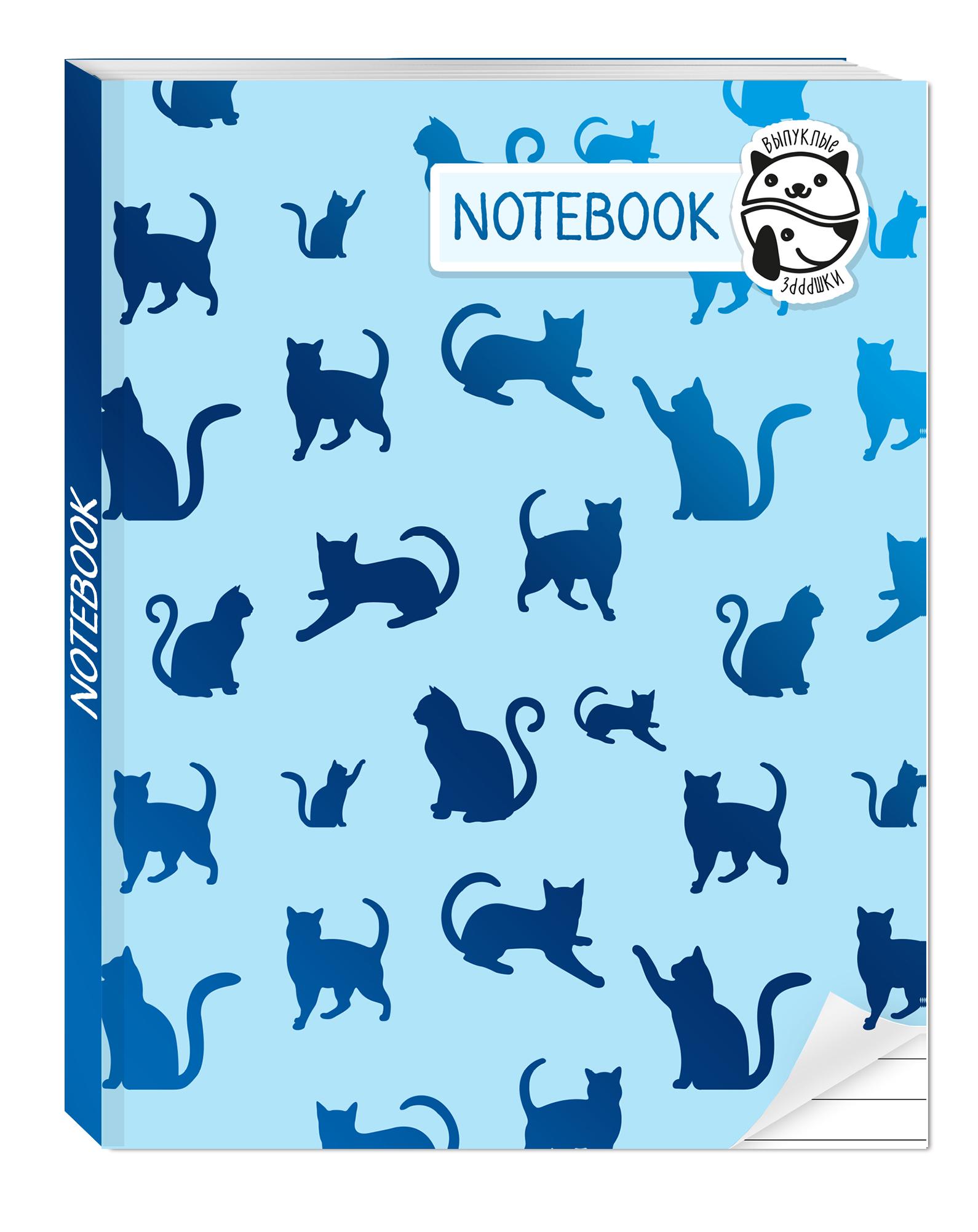 Алейникова А. Блокнот Notebook