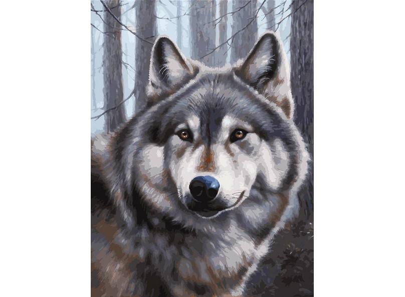 Живопись на холсте 30*40 см. Волк (090-AS) живопись diy digital painting diy 30 40