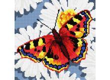Картины со стразами. Бабочка на ромашках (037-RS-R)