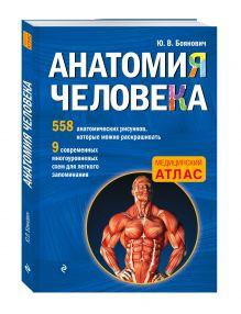 Анатомия человека со страницами для раскрашивания