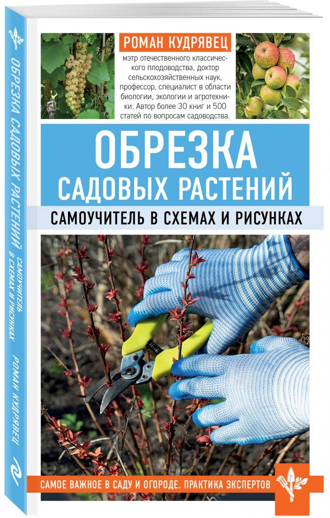 Роман Кудрявец - Обрезка садовых растений. Самоучитель в схемах и рисунках обложка книги
