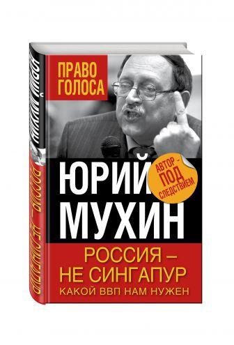 Юрий Мухин - Россия – не Сингапур. Какой ВВП нам нужен обложка книги