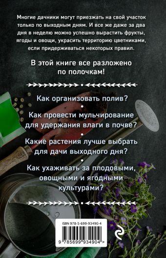 Дача по выходным. Урожай за 2 дня. 50 правил успеха Мария Колпакова