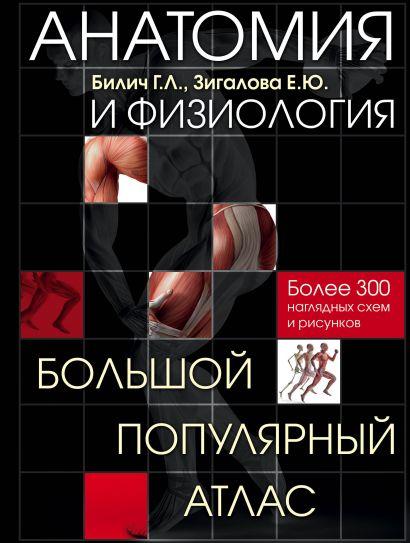 Анатомия и физиология. Большой популярный атлас - фото 1