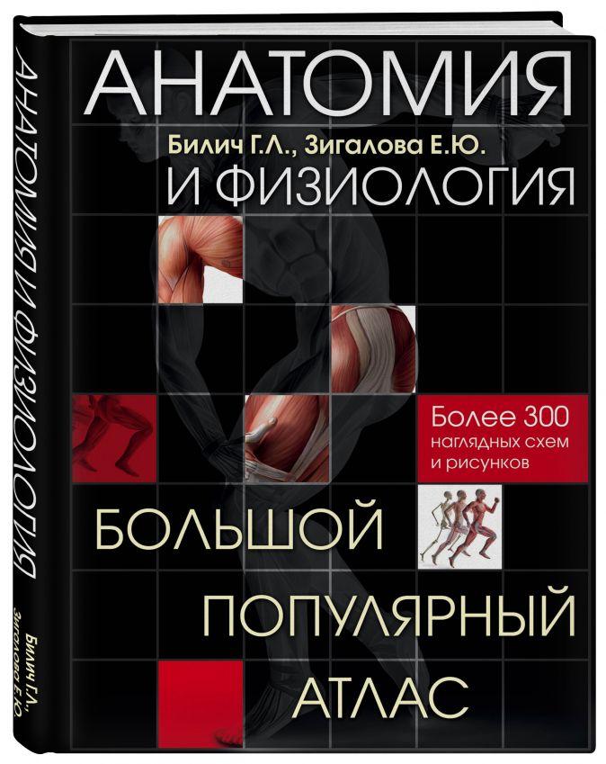 Анатомия и физиология. Большой популярный атлас Билич Г.Л., Зигалова Е.Ю.