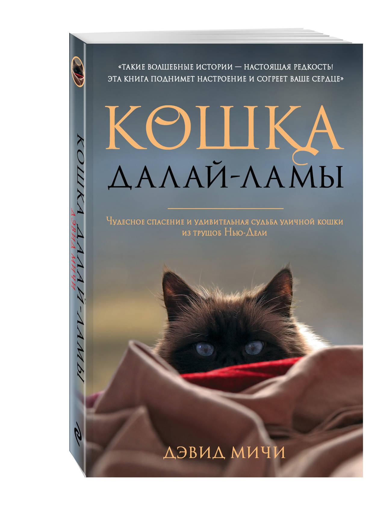 Мичи Д. Кошка Далай-Ламы. Чудесное спасение и удивительная судьба уличной кошки из трущоб Нью-Дели (покет) etude mici