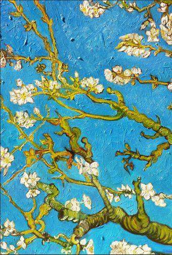 Обложка для паспорта. Ван Гог. Цветущие ветки миндаля (Арте)