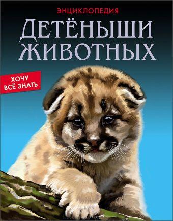 Детёныши животных Калугина Леся