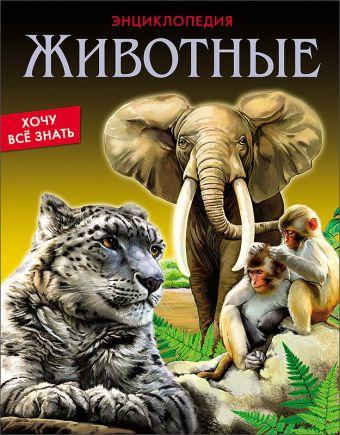 Животные Соколова Ярослава