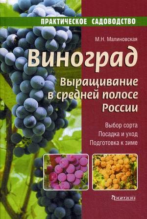 Малиновская М.Н. - Виноград. Выращивание в средней полосе России. обложка книги