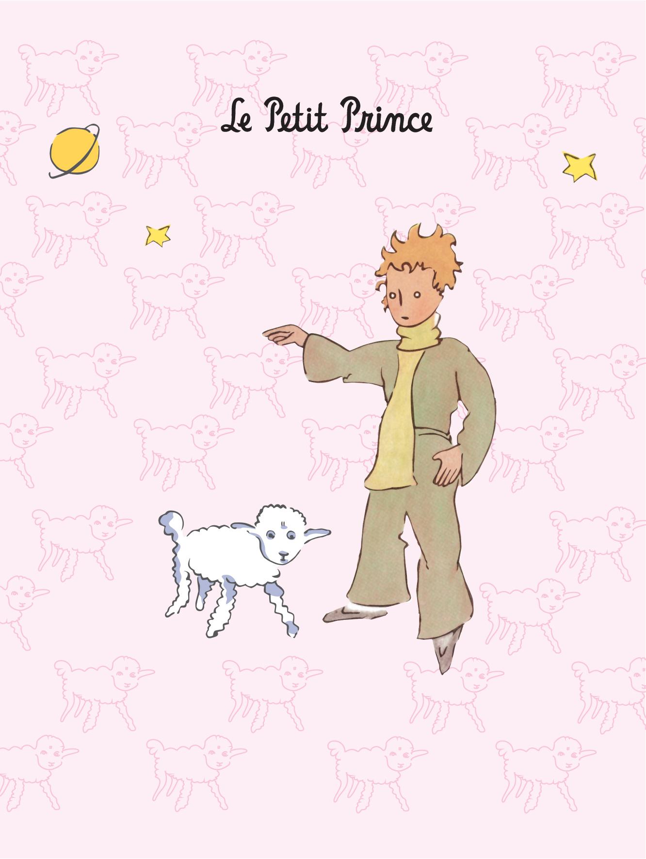 Сент-Экзюпери А. Блокнот Маленький принц. Паттерны 2