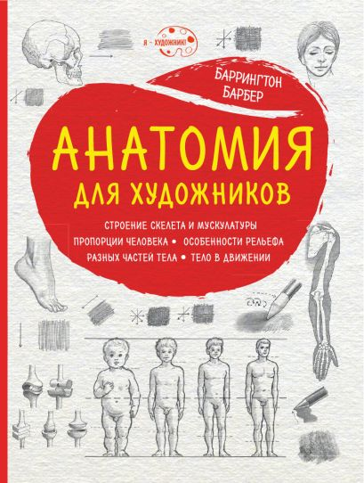 Анатомия для художников (нов. оф.) - фото 1