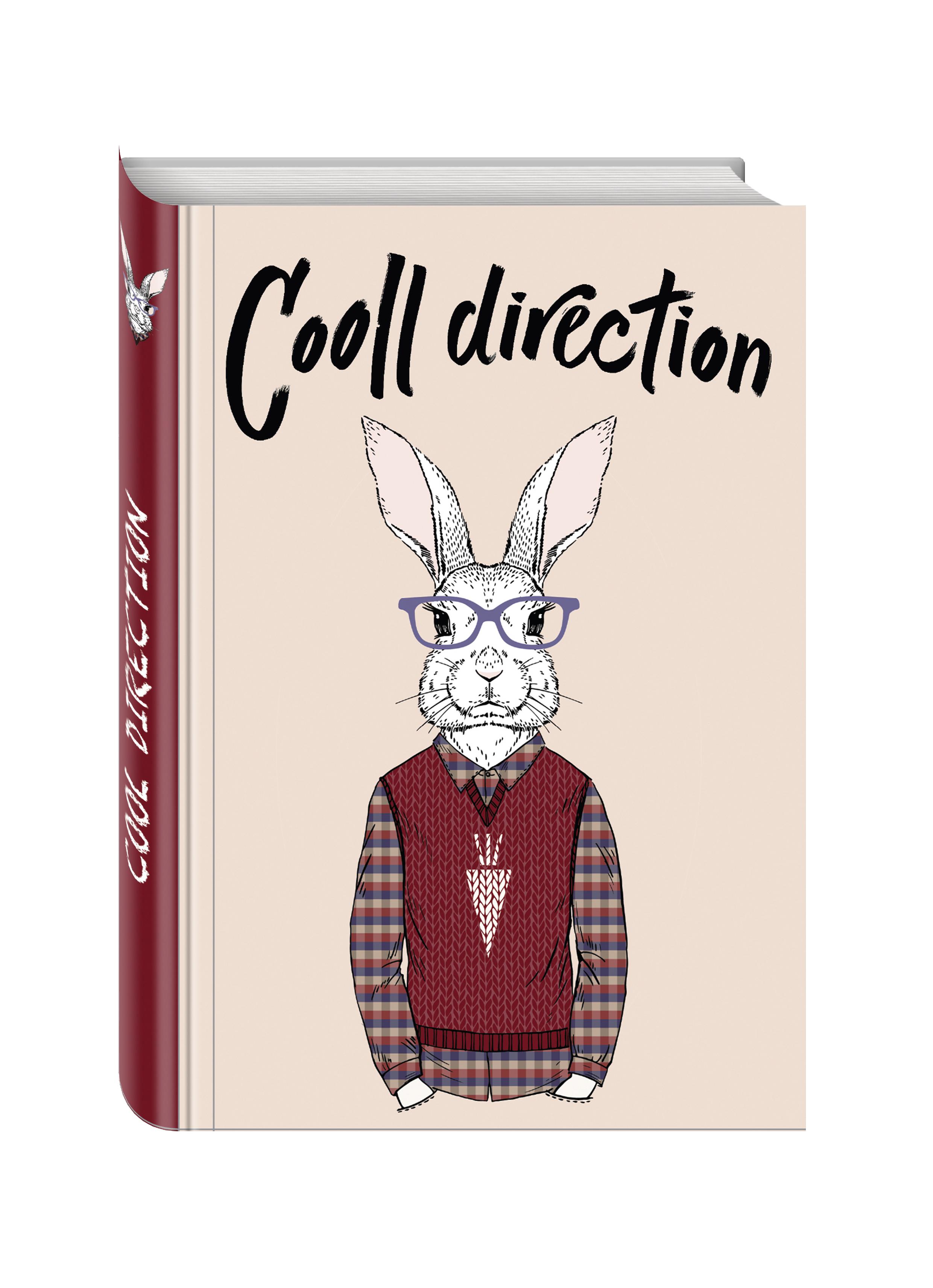 Cooll direction (Блокнот для хипстеров) (твердый переплет, 136х206 мм) гель любрикант silicon love cooll 30г