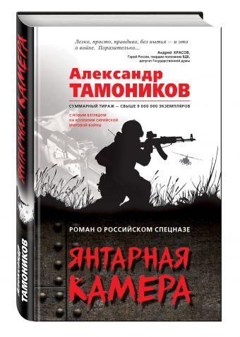 Янтарная камера Тамоников А.А.