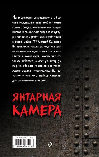 Янтарная камера Александр Тамоников