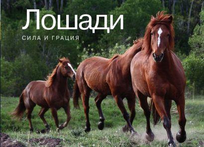 Лошади. Сила и грация - фото 1