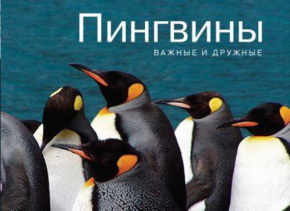 Пингвины. Важные и дружные - фото 1