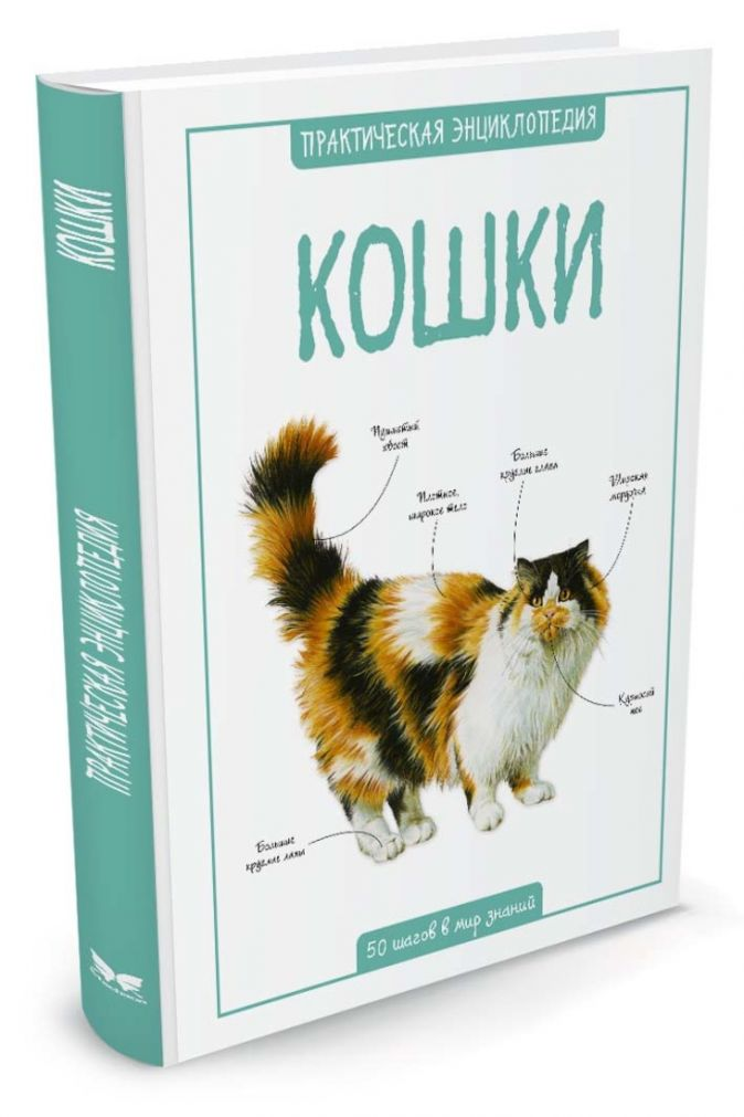 Бедуайер К. - Кошки обложка книги