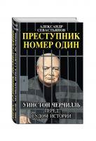 Александр Севастьянов - Преступник номер один. Уинстон Черчилль перед судом Истории' обложка книги