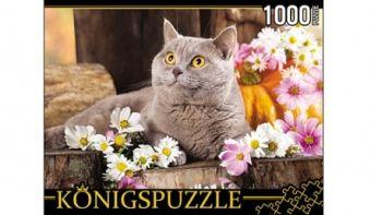 Königspuzzle. ПАЗЛЫ 1000 элементов. ГИК1000-6552 БРИТАНСКИЙ КОТ