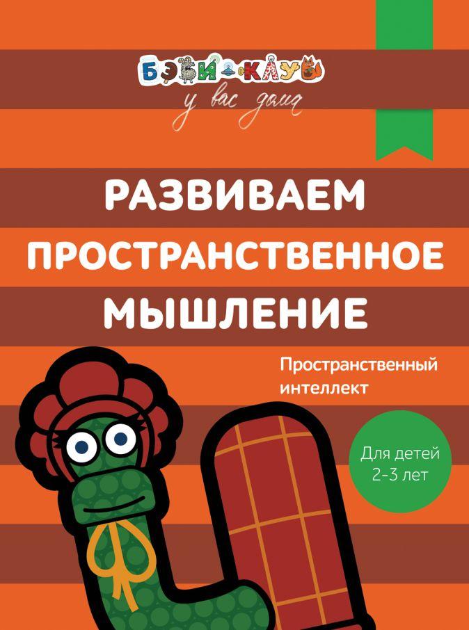 Кизилова А., Зюзько Г. и др. - Бэби-клуб 2-3 Развиваем пространственное мышление обложка книги