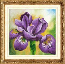 Мозаичные картины. Ирис (303003)
