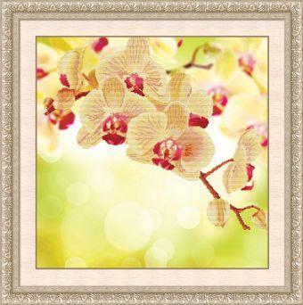Мозаичные картины. Нежная орхидея - мозаичная картина (80172)