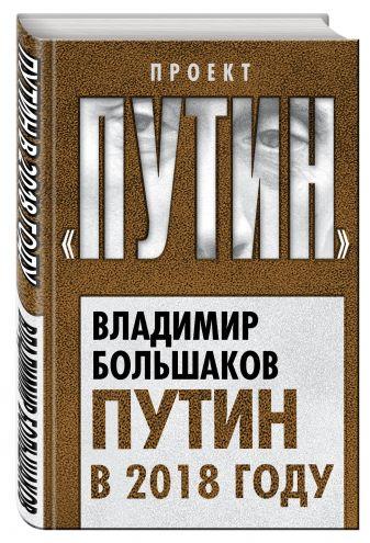 Владимир Большаков - Путин в 2018 году обложка книги