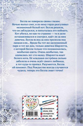Рождественские истории. Снежный кот Холли Вебб