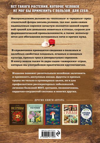 Натуральная аптечка. Дары природы, которые вы можете применять с пользой для себя Татьяна Ильина
