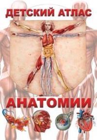 Гуиди В. - Детский атлас анатомии(меловка) обложка книги