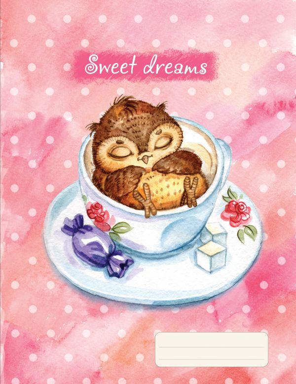 Тетрадь Совы. Sweet Dreams (48 л., клетка)