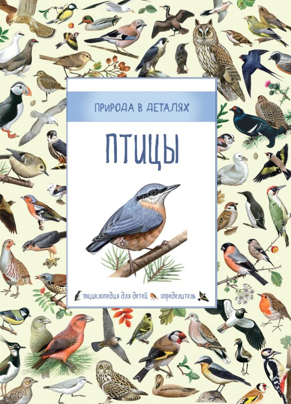 Птицы (Природа в деталях) Дэвидсон С., Корто С., Дейвис К.