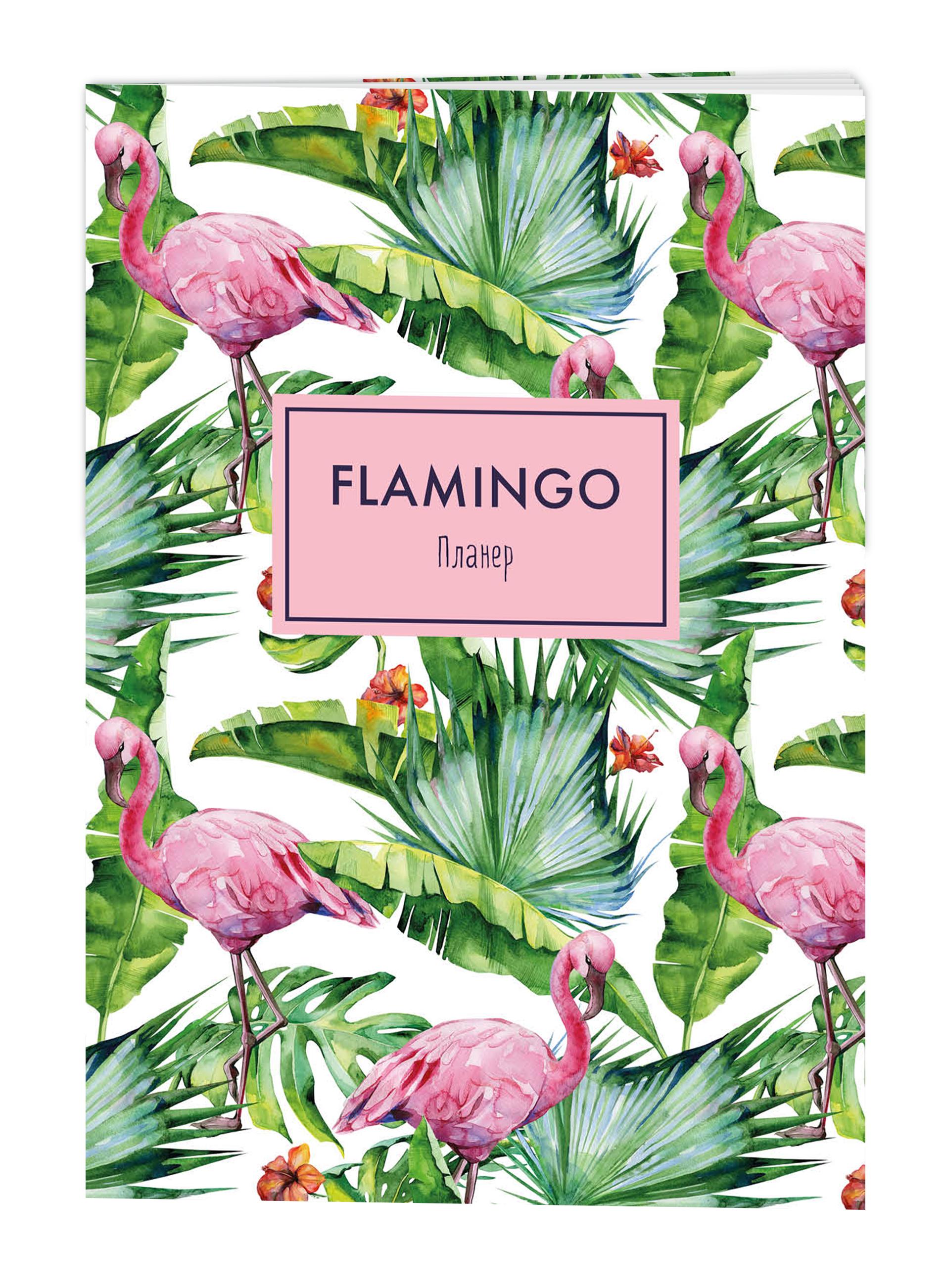 Блокнот-планнер. Mindfulness. Фламинго (формат А4, на скобе, зелёная обложка) (Арте) блокнот mindfulness фламинго формат а5 на скобе фламинго на белом 72 стр