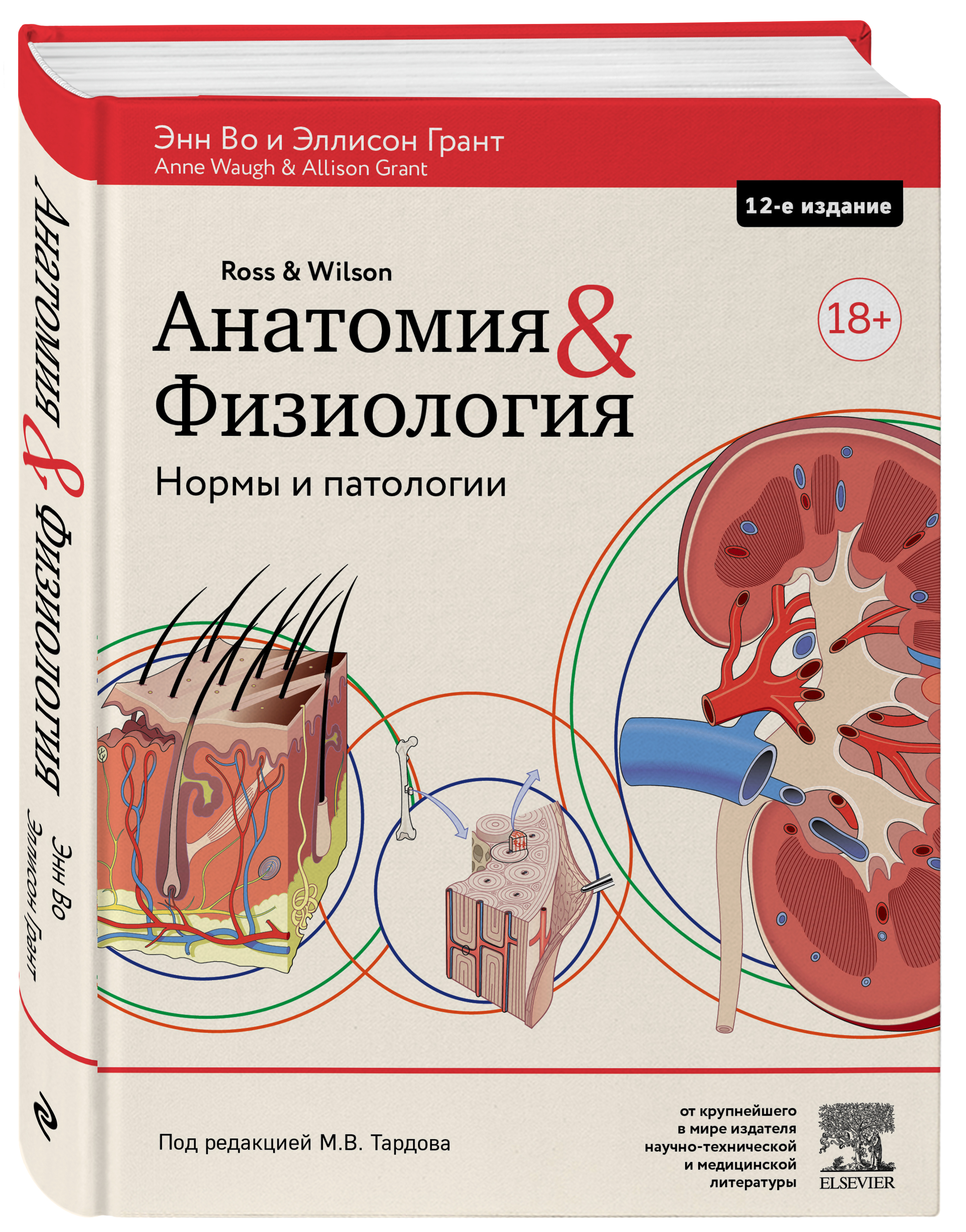 Анатомия и физиология: здоровье и заболевания ( Анна Во, Эллисон Грант  )