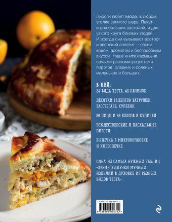Пироги. Большая книга рецептов