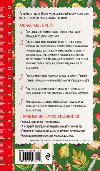 Грибы. Иллюстрированный справочник-определитель Т. Ильина