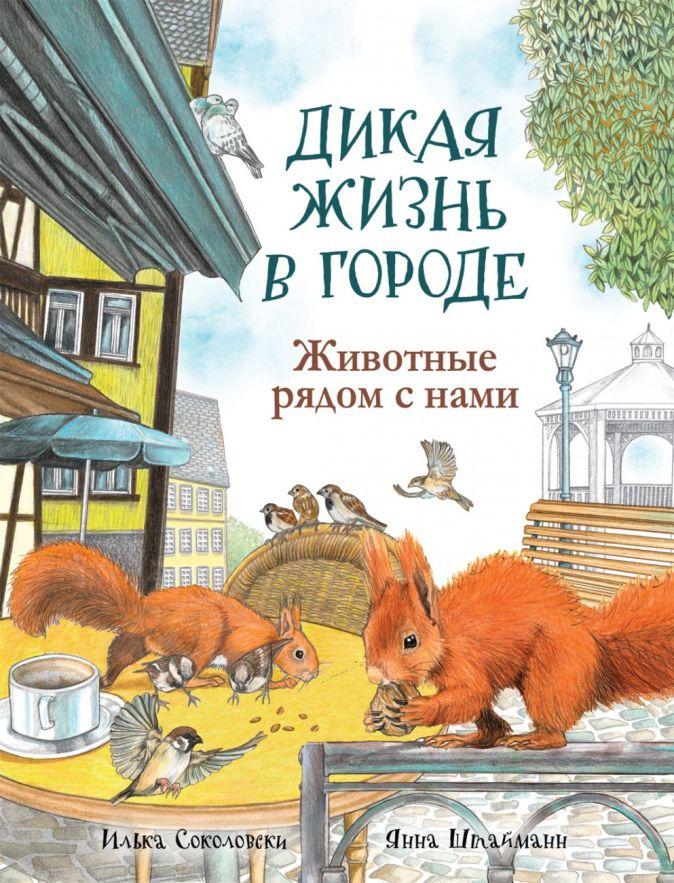 Дикая жизнь в городе. Животные рядом с нами Соколовски И., Штайманн Я.