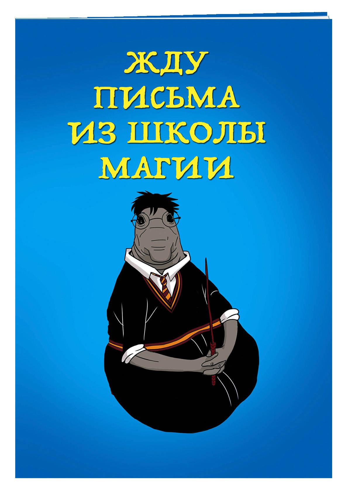 Жду письма из школы магии (блокнот в мягкой обложке линейку)